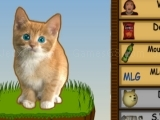 Game Cat Clicker MLG